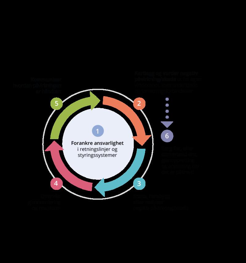 Modell som viser 6 trinn for å gjøre aktsomhetsvurderinger for ansvarlig næringsliv