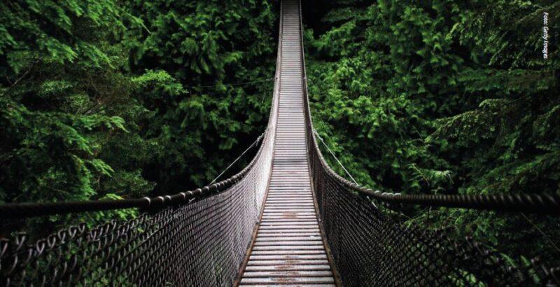 Bildet av en hengebro i jungelen