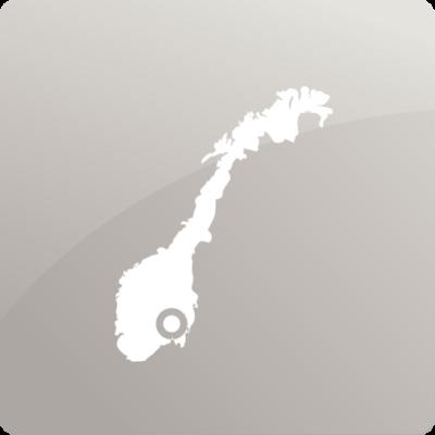 29 regioner oslo grå