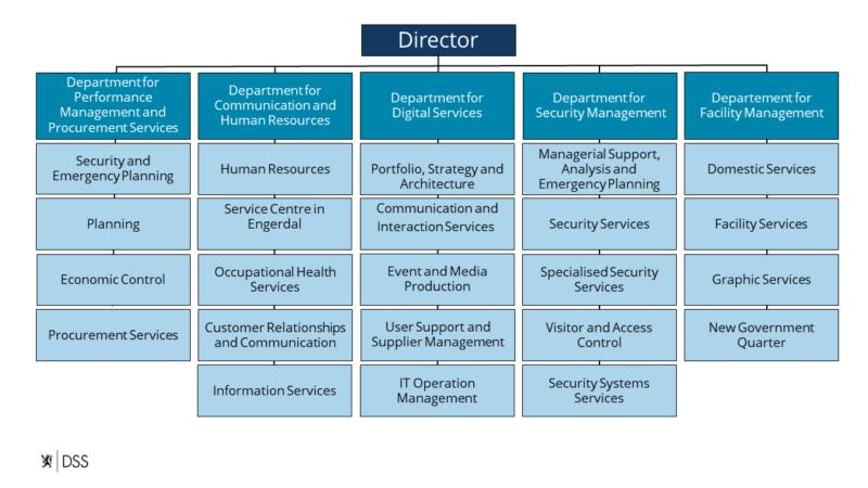 Organisasjonskart DSS engelsk