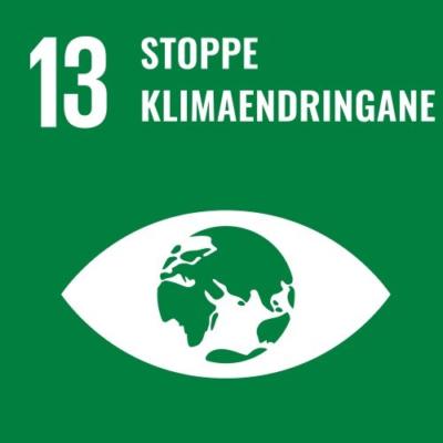 13. Stoppe klimaendringene