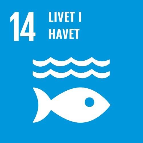 14. Livet i havet